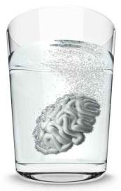 Dieta mózgu - zdjęcie mózgu w szklance wody