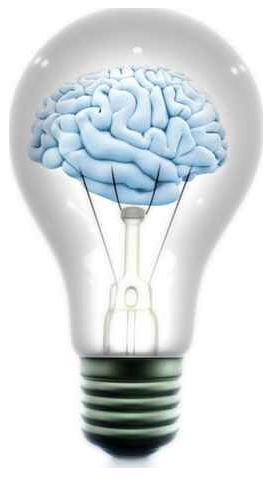 obrazek mózgu w nauce języków obcych