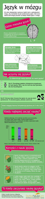 obrazek przedstawiający dane o nauce języków obcych i mózgu
