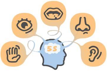 Zobrazowanie metody nauki języka - 5S
