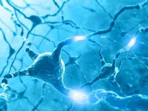 Czytanie fotograficzne a ślady pamięciowe w mózgu